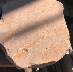 Natural Stepping Stone