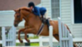 Hazelwild Farm Equestrian Center