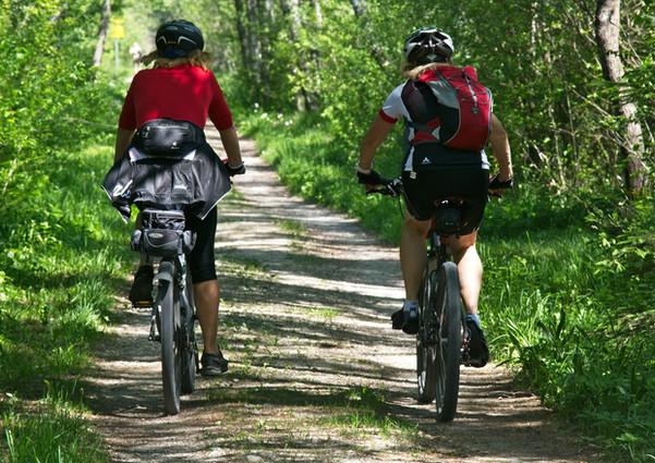 Una gita in mountain bike