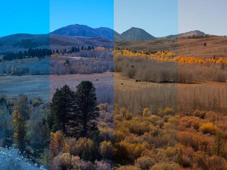Hogyan lehet pontos színeket kapni a fotókon