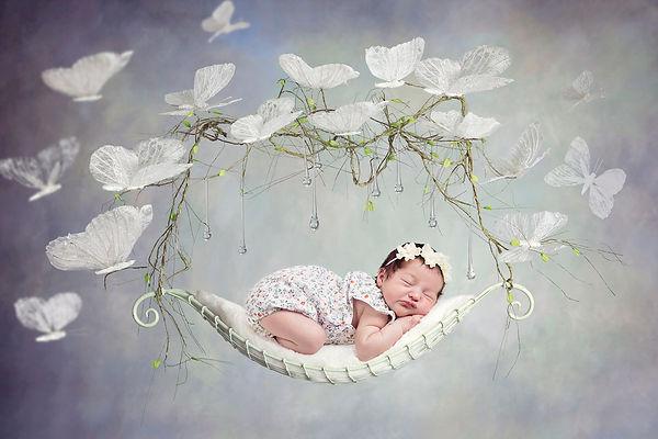 butterfly baby.jpg