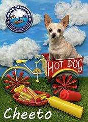 Cheeto 072121 Hot DOg 2.jpg