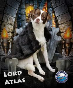 Atlas 0317 throne