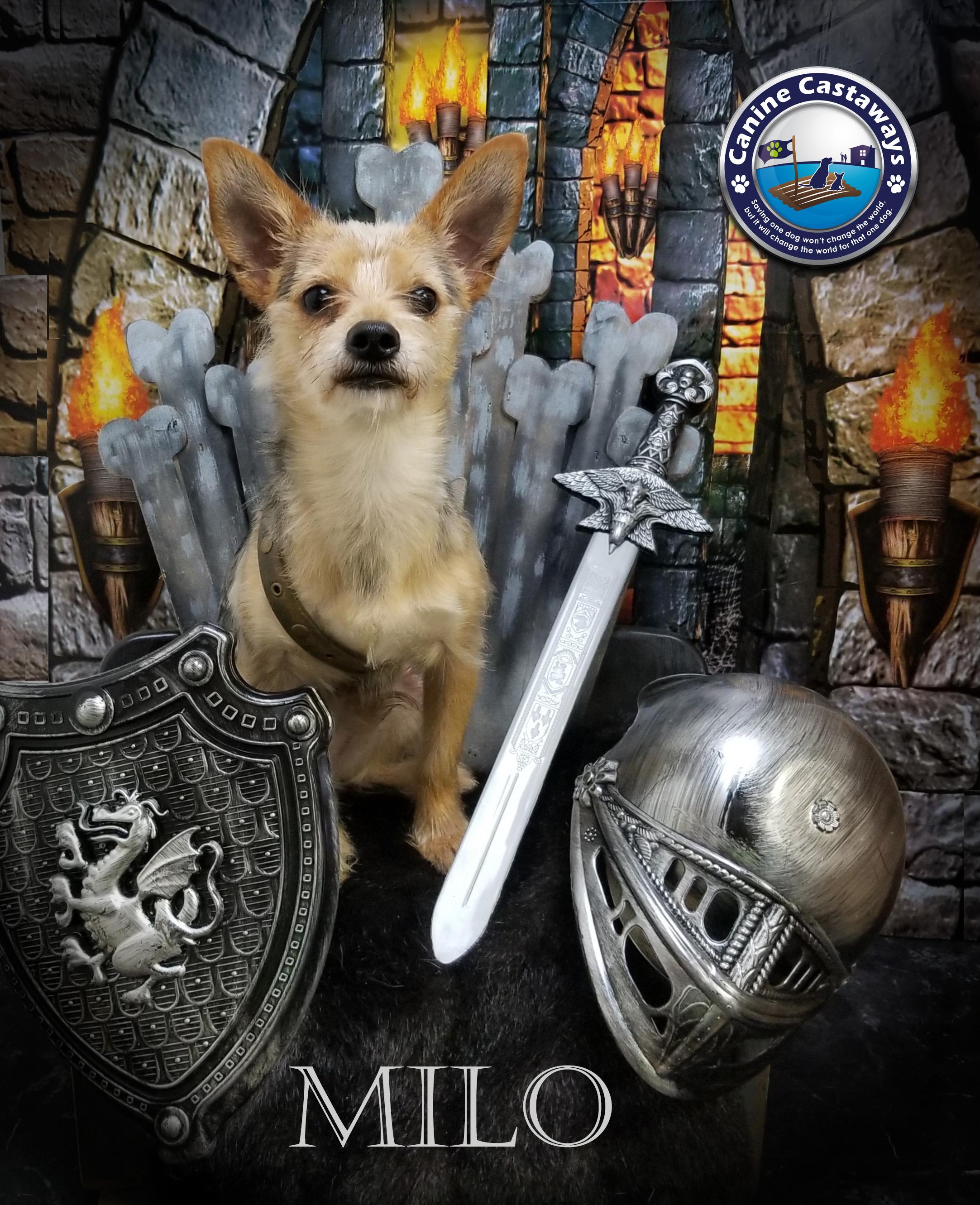Milo 0518 throne