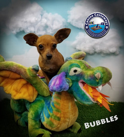 Bubbles 0519 dragon (2)