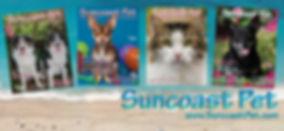 Suncoast Pet.jpg