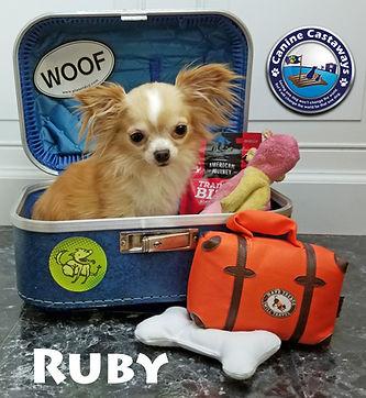 Ruby 0728 suitcase.jpg