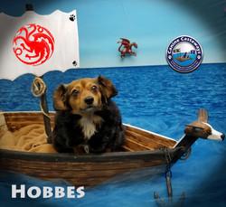 Hobbes 0519 boat