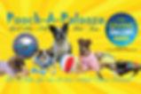 poochapalooza banner.jpg