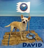 David 0301 raft (2).jpg