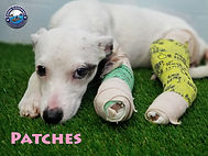 Patches 0331 medical (5).jpg