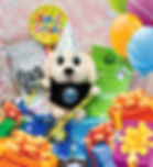 puppy pal birthday 2.jpg