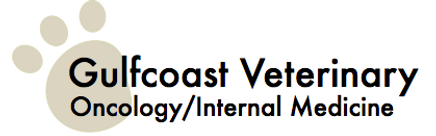 gulfcoast veterinary oncology.png