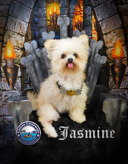 GOT Jasmine (5)