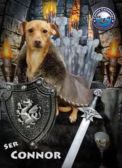 Connor 0428 throne