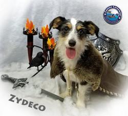 Zydeco 0413 snow