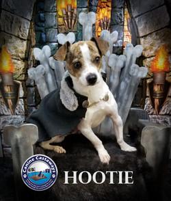 Hootie 0310 throne