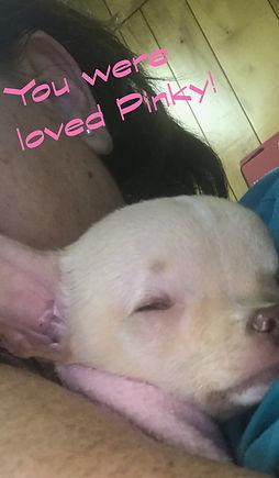 Pinky (2).jpg