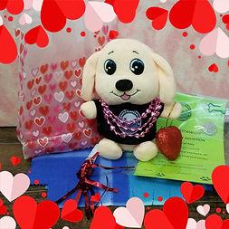 Puppy Pal Valentine.jpg