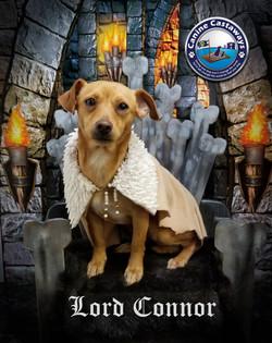Connor 0305 throne