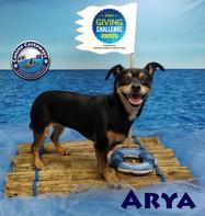 Arya 032220 raft.jpg