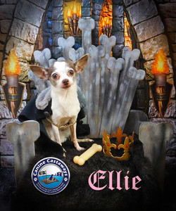 GOT Ellie Mae (1)
