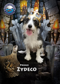 Zydeco 0413 throne crown