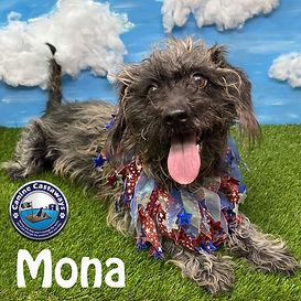 Mona 061321 patriotic.jpg