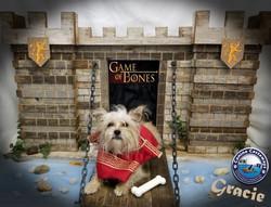 Gracie 0511 castle