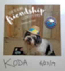 Koda 0623 (1).jpg