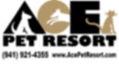 ACE 2013 banner.jpg