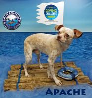 Apache 031520 raft.jpg