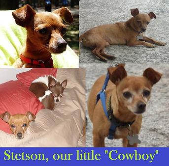 RIP Stetson.jpg