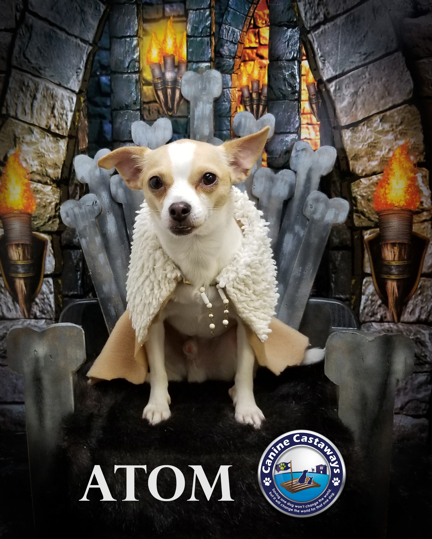 Atom 0309 throne