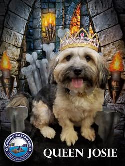 Josie 0310 throne (2)