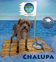 Chalupa 031520 raft.jpg