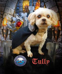 GOT Tully 080617 (3)