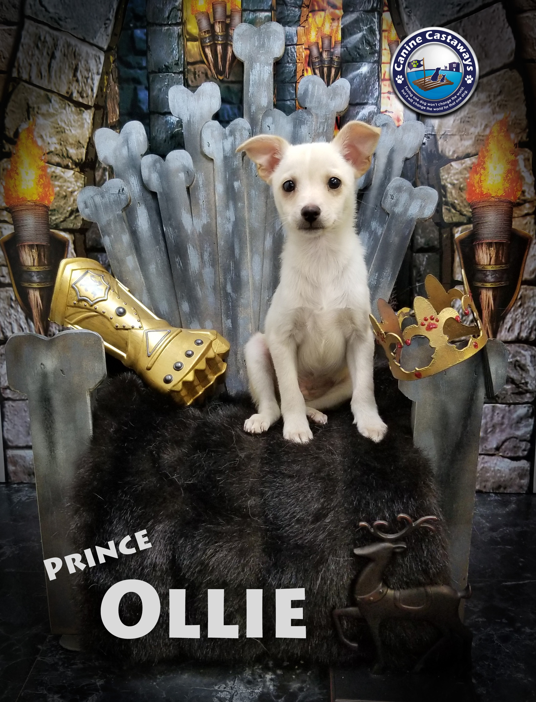 Ollie 0509 throne