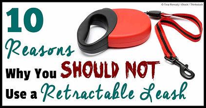retractable leash.jpg