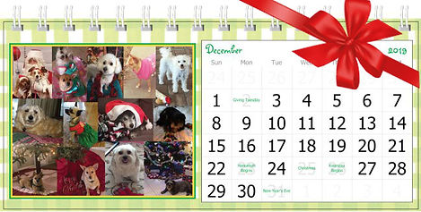 2019 desk calendar with bow.jpg