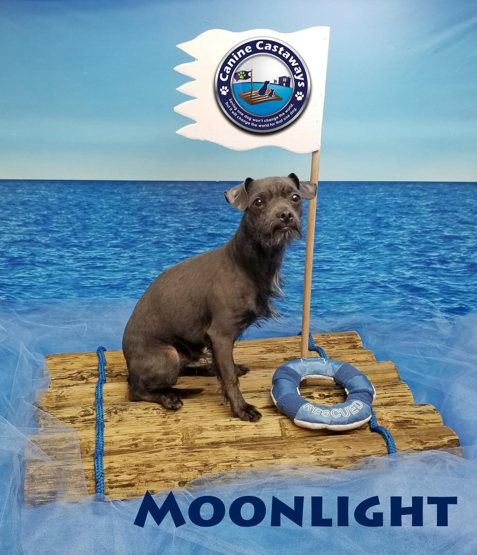 Moonlight 030820 raft.jpg