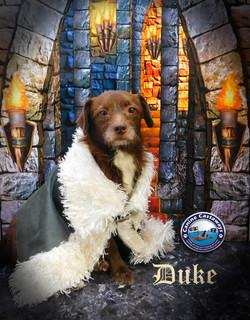 GOT Duke 082017