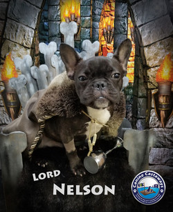 Nelson 0512 throne