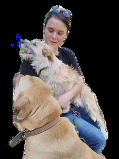 Vrijwilliger worden in een dierenasiel in het buitenland