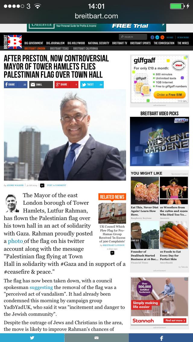 What happened to the flag of Gaza flying in Tower Hamlets - a look back to 2014