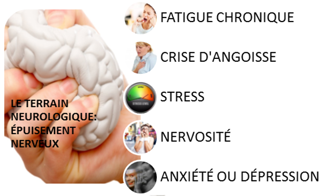 photo nerveux (2).png