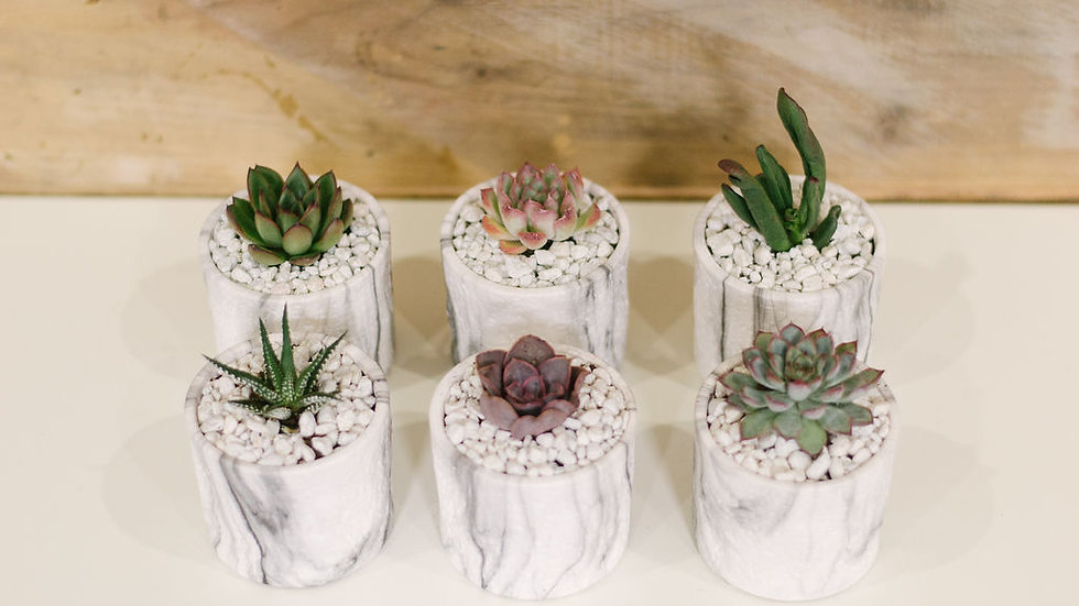White Faux Marble Party Favours