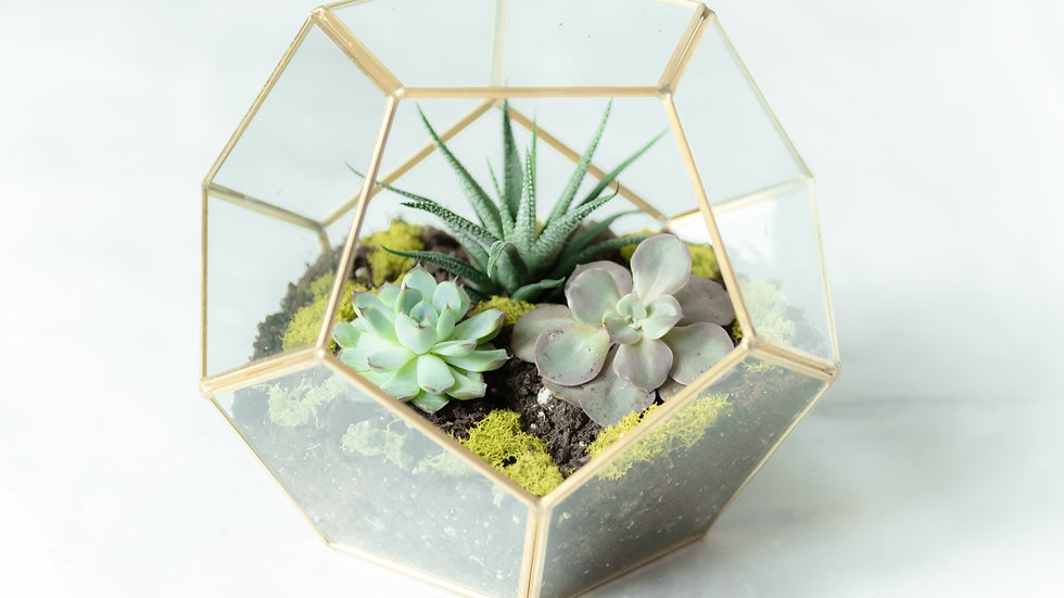 Geometric Round Planter - Gold