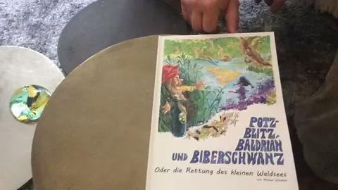 Die Rettung des kleinen Waldsees - ein Kindercomic zum Thema Umwelt, knallbunt, mit Liebe und echtem Anliegen gezeichnet