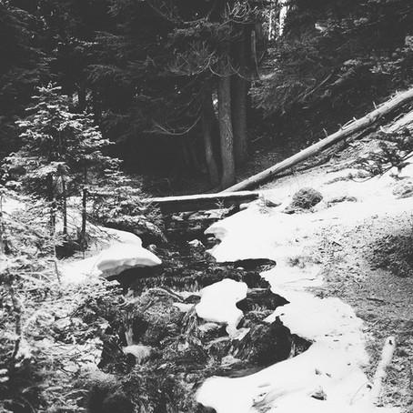 Seasonal Self - Winter